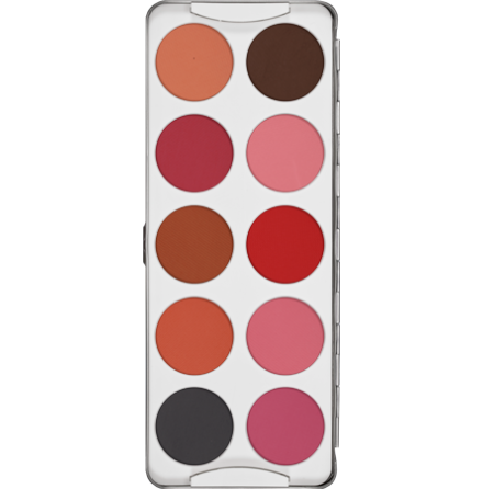 Dry Rouge Palette 10 colors