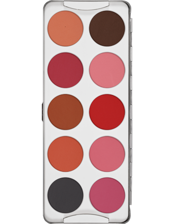 Dry Rouge Palette 10 colors